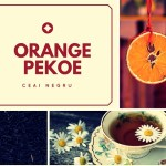 Ai gustat ceaiul Orange Pekoe?