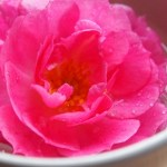 Cum te poate ajuta apa de trandafiri?