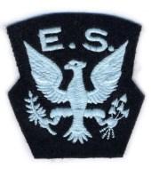 Официальная эмблема ES