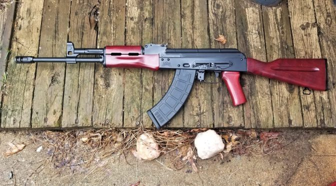 PSA AK-E Part 3: Tear Down and More Detailed Observations