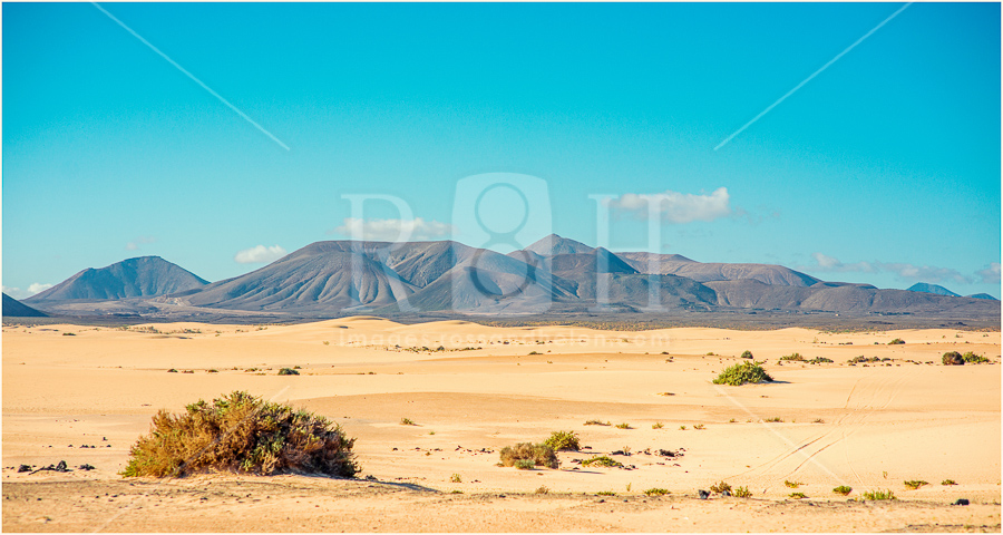 4 Canary Islands, Fuerteventura