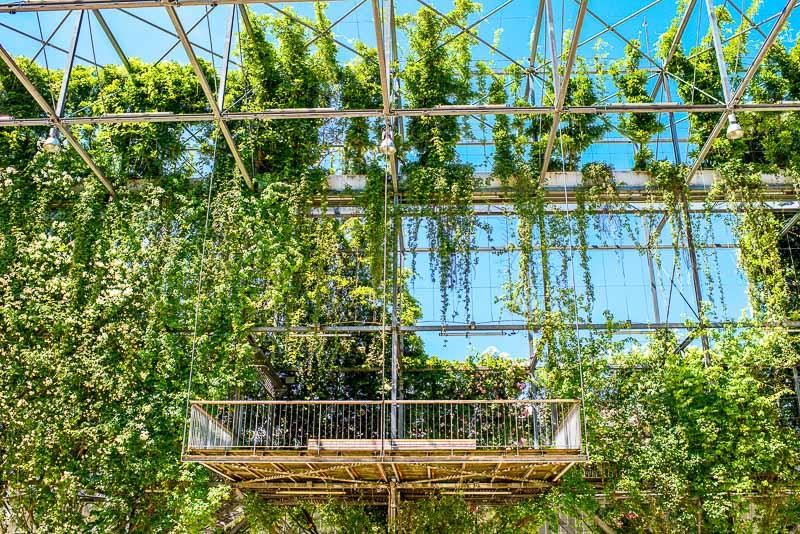 green gardens architecture-20