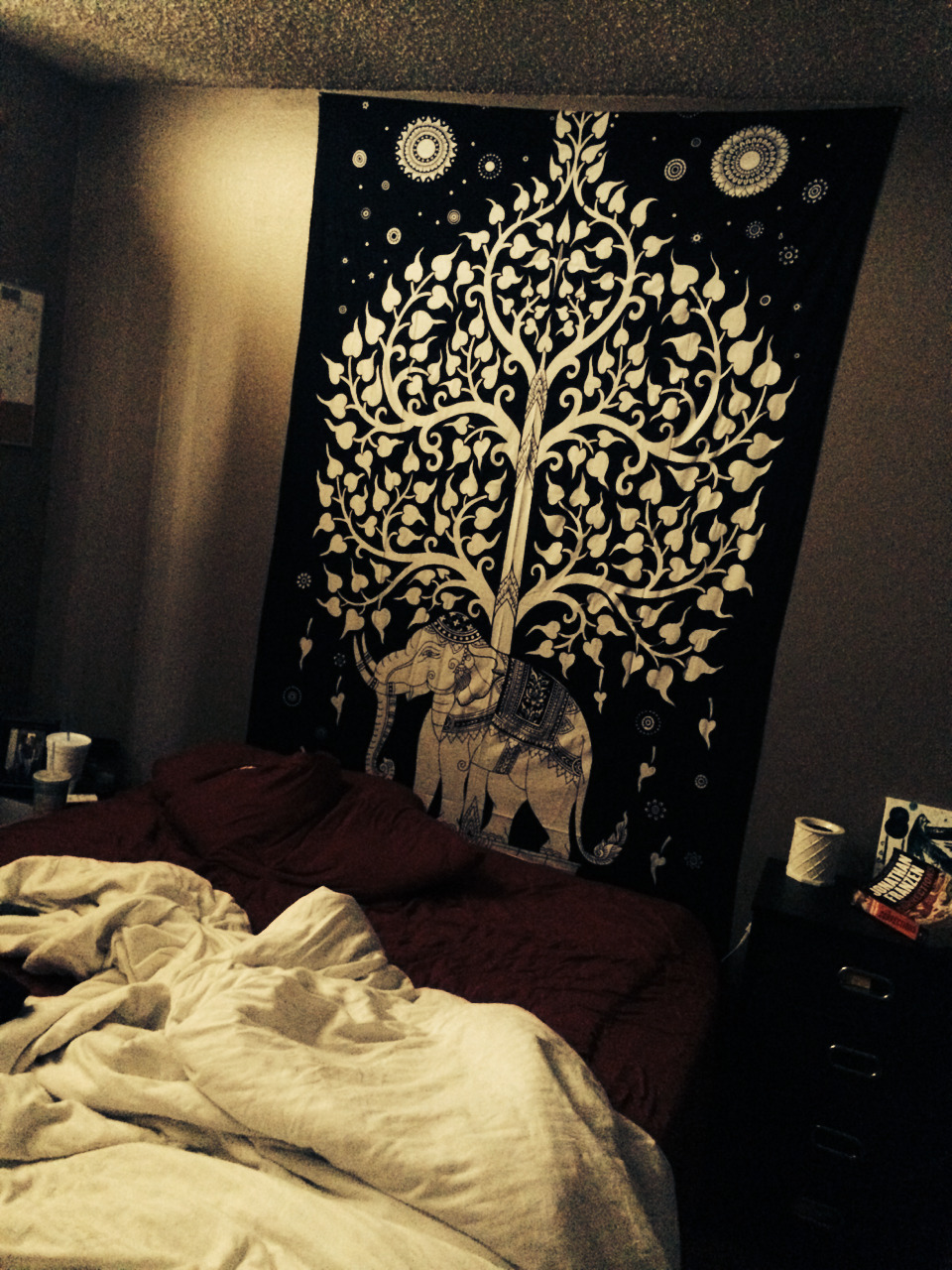 Dorm Room Decorating Idea Royal Furnish