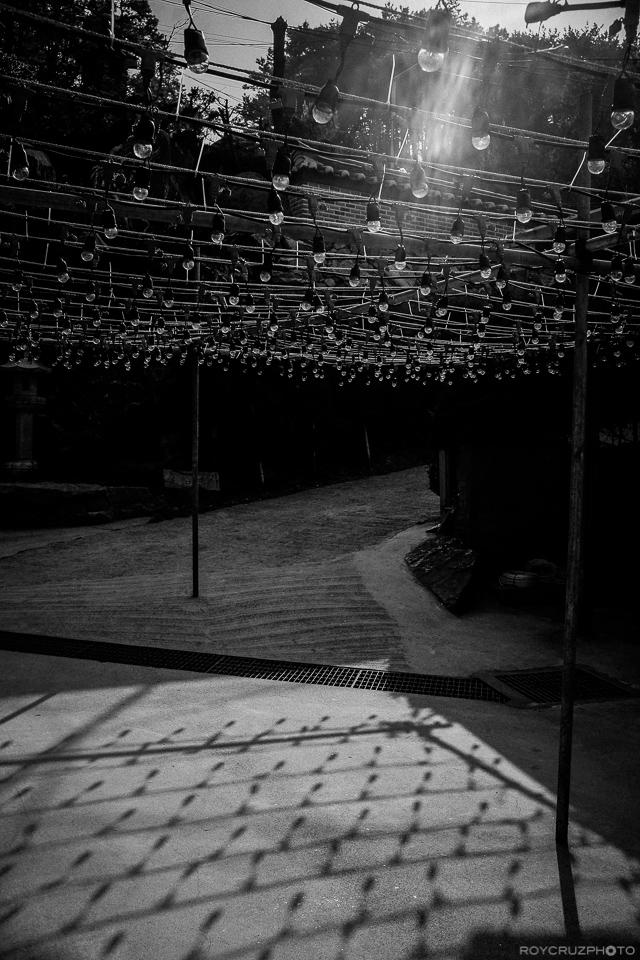 Bare lightbulbs wait for lanterns a few weeks before Buddha's birthday celebration in South Korea. ISO 400 Haedong Yonggungsa (해동용궁사) Temple Busan, South Korea