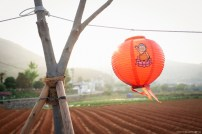 A lantern hangs along the side of the road in celebration of Buddha's birthday. ISO 200 Tongyeong, South Korea