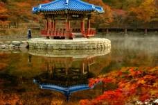 Naejangsan Autumn B-5