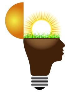 Innovator Brain
