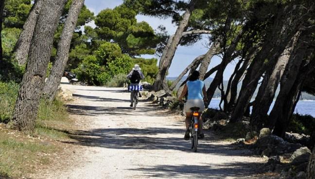 Вело алея