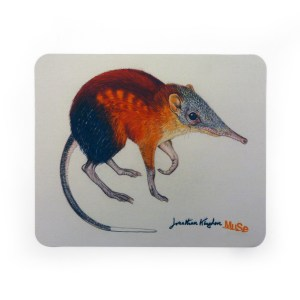 mousepad_muse-mostra-kingdon