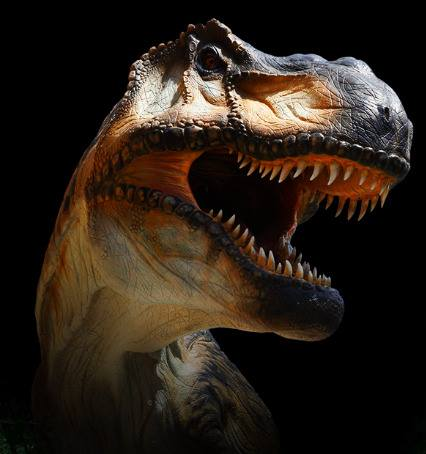 bittirex-tirannosauro