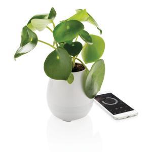 Pianta Speaker - controlla la musica ed i colori dallo smartphone