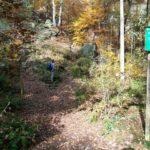 Bergpfad Griesgrund