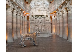 A Soul Reborn, Ajanta Caves, Ajanta