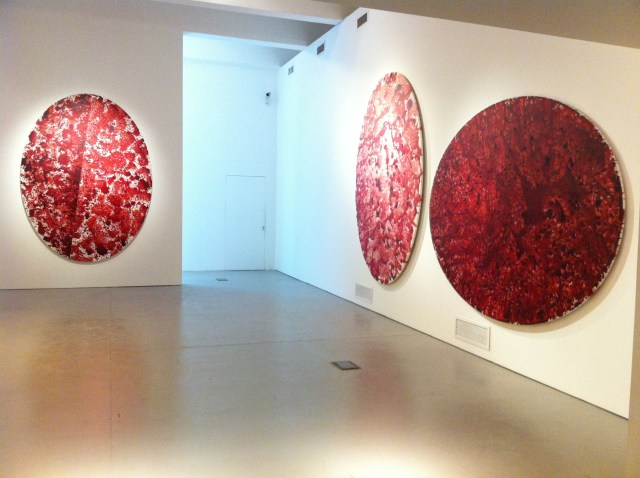 Installation Shot at MACRO, Rome