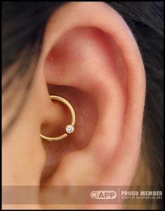 daith piercing by Dan Steinbacher, at Saint Sabrina's