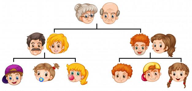 Tiền sử gia đình và sự di truyền gene ung thư