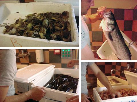 ristorante Venissa, arrivo del pesce di Marco Bergamasco