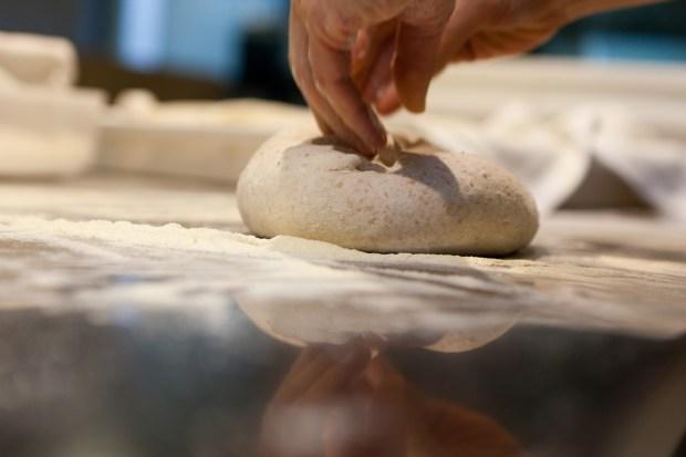 l'impasto base per pizza di Simone Padoan   ©foto Aromi Creativi