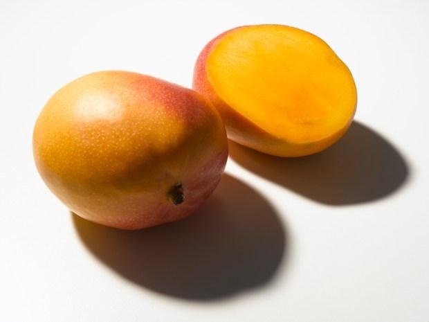 mango |©foto Paolo Nobile