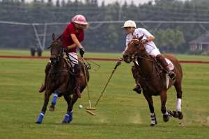 A game of polo.