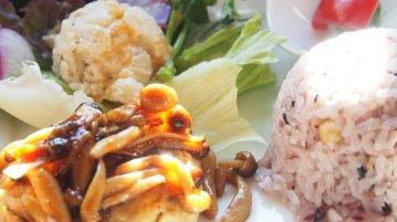 豆腐ハンバーグ和風きのこあんかけソース 880円