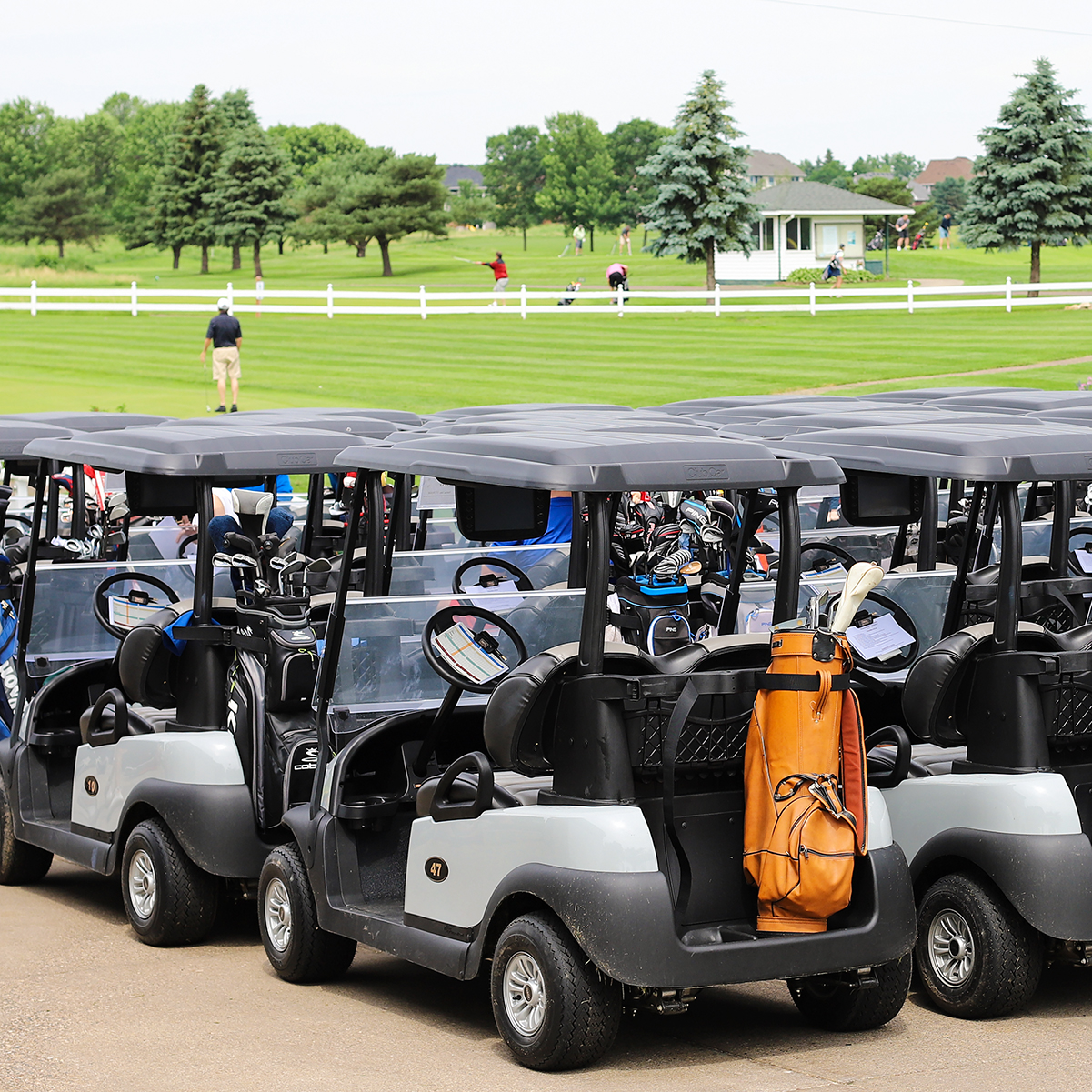 Golf carts are ready at Oak Marsh Golf - Russell Schneiderman Memorial Golf Tournament