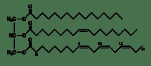 800px-Fat_triglyceride_shorthand_formula