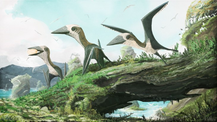 Life and environmental reconstruction of the Hornby Island pterosaur. Image by Mark Witton, used with permission.