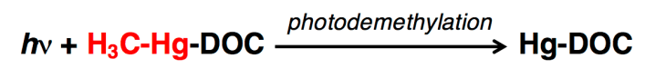 Photodemethylation chemical equation