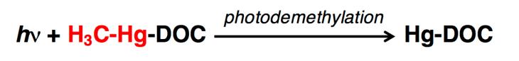 Photodemethylation chemical equation