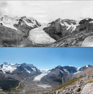 Le glacier Athabasca
