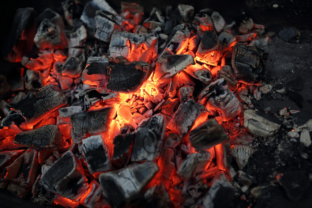 Brasa, barbacoa, parrilla; el arte de usar el fuego