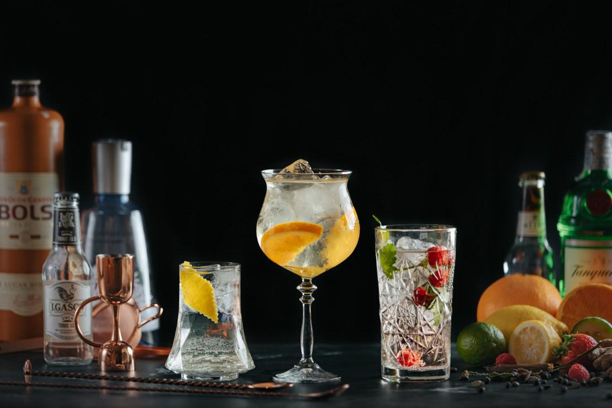 Nuevo curso: Aprende a hacer los Gin Tonics Perfectos