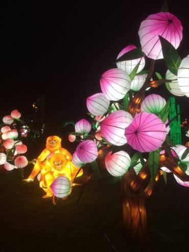 Great China Lanterns - monkeys