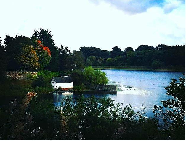 Duddingston Loch (credit and copywright: Andrew Palmer)