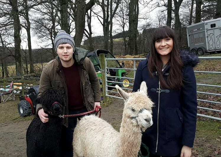 Bonding with the alpacas (Photo: Hannah Reid)