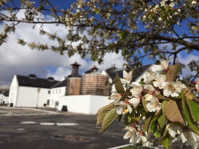 Dalwhinnie Distillery in spring (credit and copyright: Dalwhinnie Distillery)