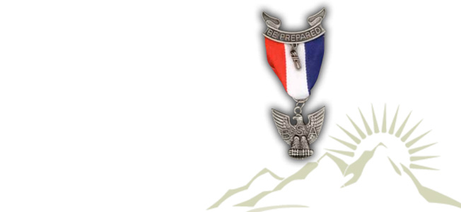 How to find a great idea for an Eagle Scout Service Project