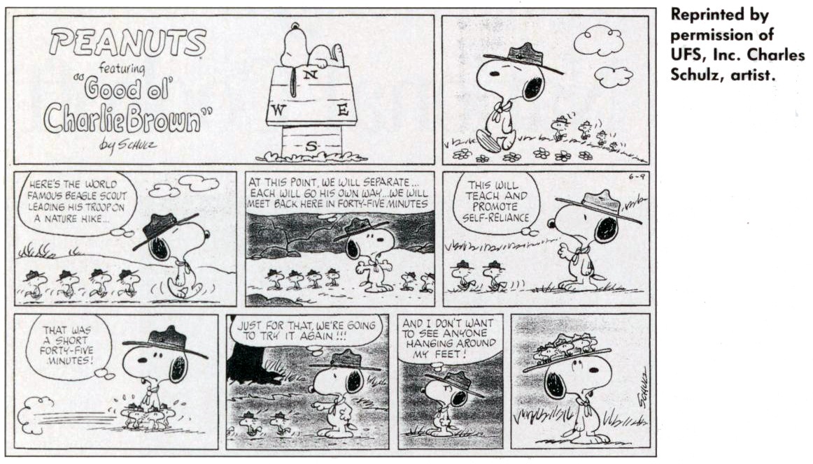 Scouting Cartoon (4 of 12)