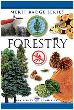 Forestry-merit-badge-pamphlet