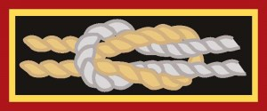 Scouting Distinguished Service Award BSA Square Knot Award repo