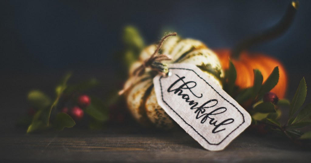 This Thanksgiving weekend, why not launch your own 'Scouting Gratitude Tour'?