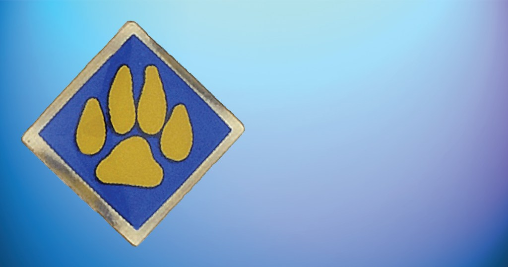 BSA recalls Cub Scout Outdoor Activity pins sold between April 2016 and January 2020
