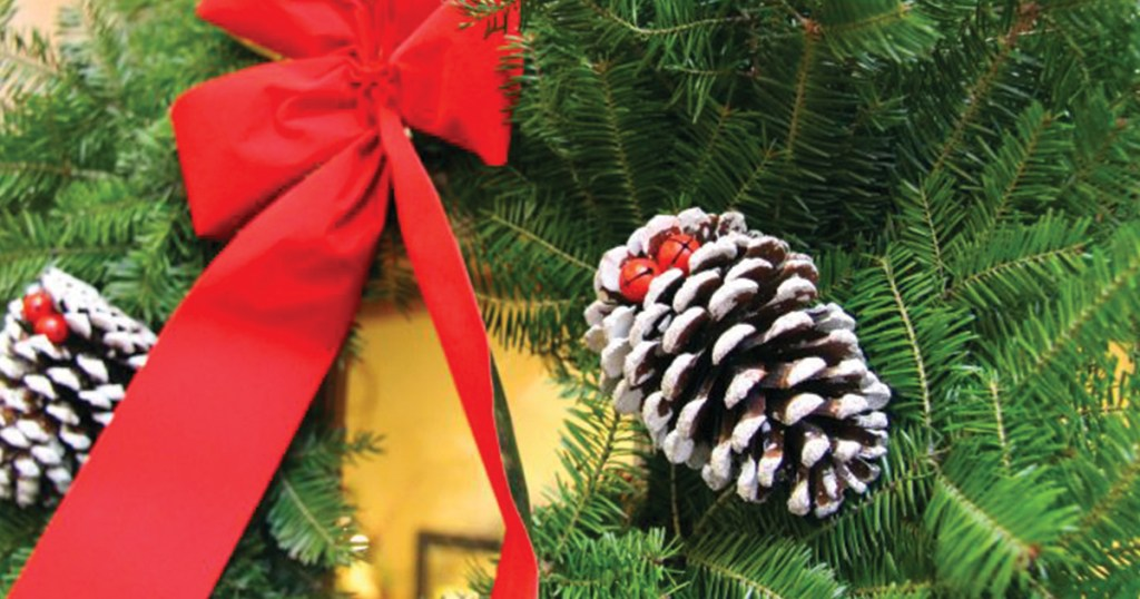 Boy Scouts Christmas Tree Rockford Il 2020 A COVID friendly, non contact, high profit fundraiser for your