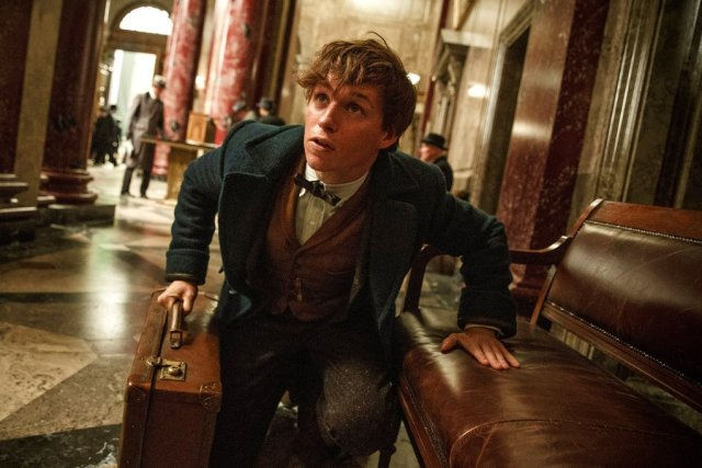 Image of Eddie Redmayne as Newt Scamander in Fantastic Beasts and Where to Find Them