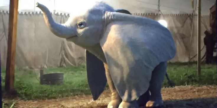 Dumbo - live action disney