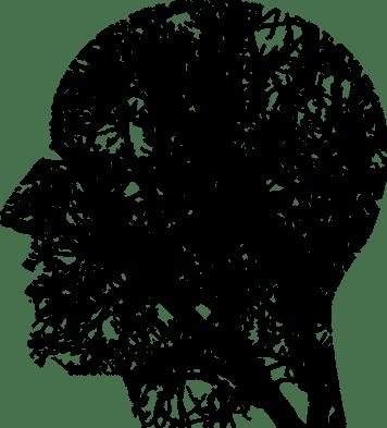 gender dysphagia biid
