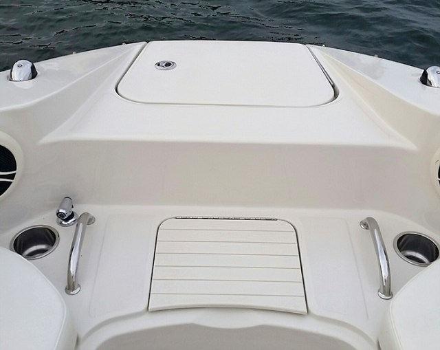 SeaRay7_small