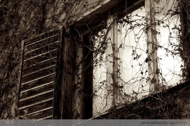 Das Fenster vergangener Zeiten