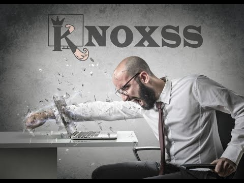 KNOXSS for Dummies! A new Detailed Guide to use KNOXSS Pro in real